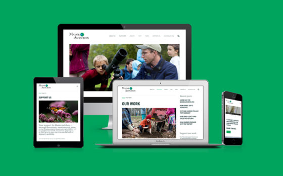 Maine Audubon website as viewed on multiple devices